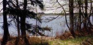 Pabra järv